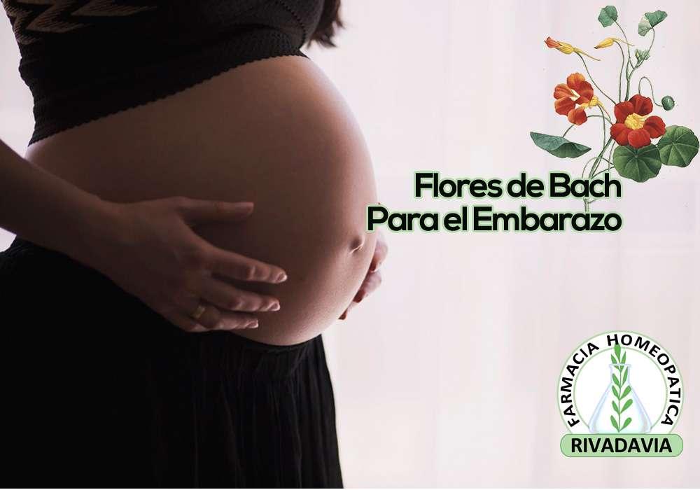 Homeopatia Flores De Bach Para El Embarazo